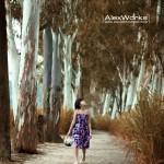 alexworks_0337